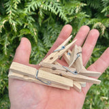 Wooden Clothes Pegs (FSC Certified)