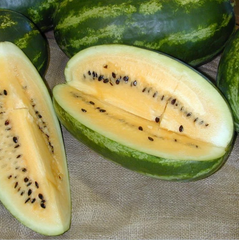 Hopi Yellow Meated Watermelon
