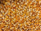 Orange Corn Blend