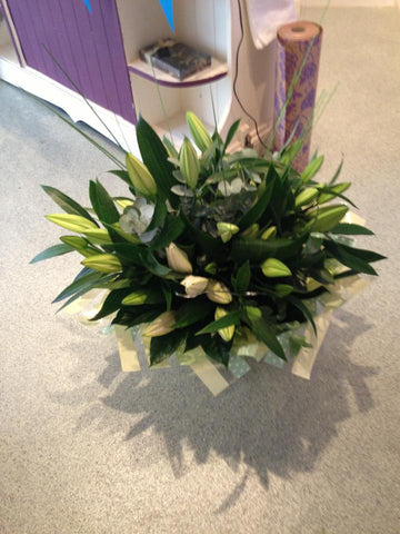 All Lily Hand Tied