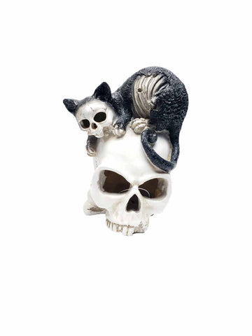 Light Up Skull with Black Cat