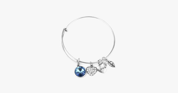 December Birthstone Charm Bangle - FREE SHIP DEALS