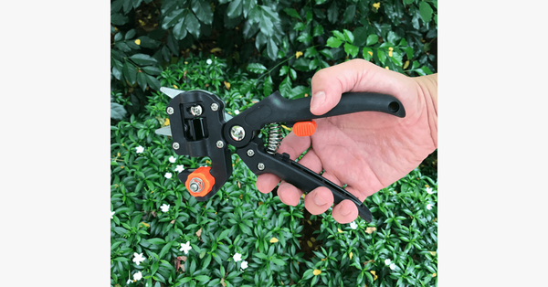 Pro Gardener's Grafter - FREE SHIP DEALS