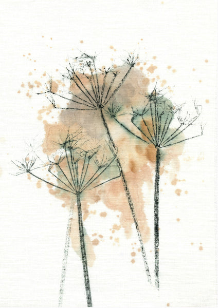 Cowparsley Stems Giclee Art Print