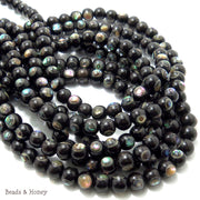 Ebony Wood with Abalone Shell Round 6mm (Half Strand)