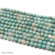 Sea Green Fired Agate Round Faceted 6mm (Full Strand)