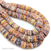 Pecten Shell Bead Multicolored Heishi 10mm (16 Inch Strand)