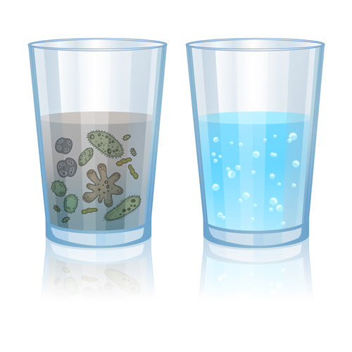 Bacteria and Germs Drinking Water Filter Against Harmful Substances ALB Filter Active Plus Grey