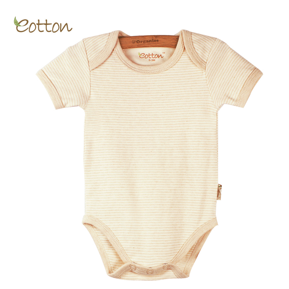 Organic Short Sleeve Bodysuit with Envelop Neck in Milk / Stripes / Caramel