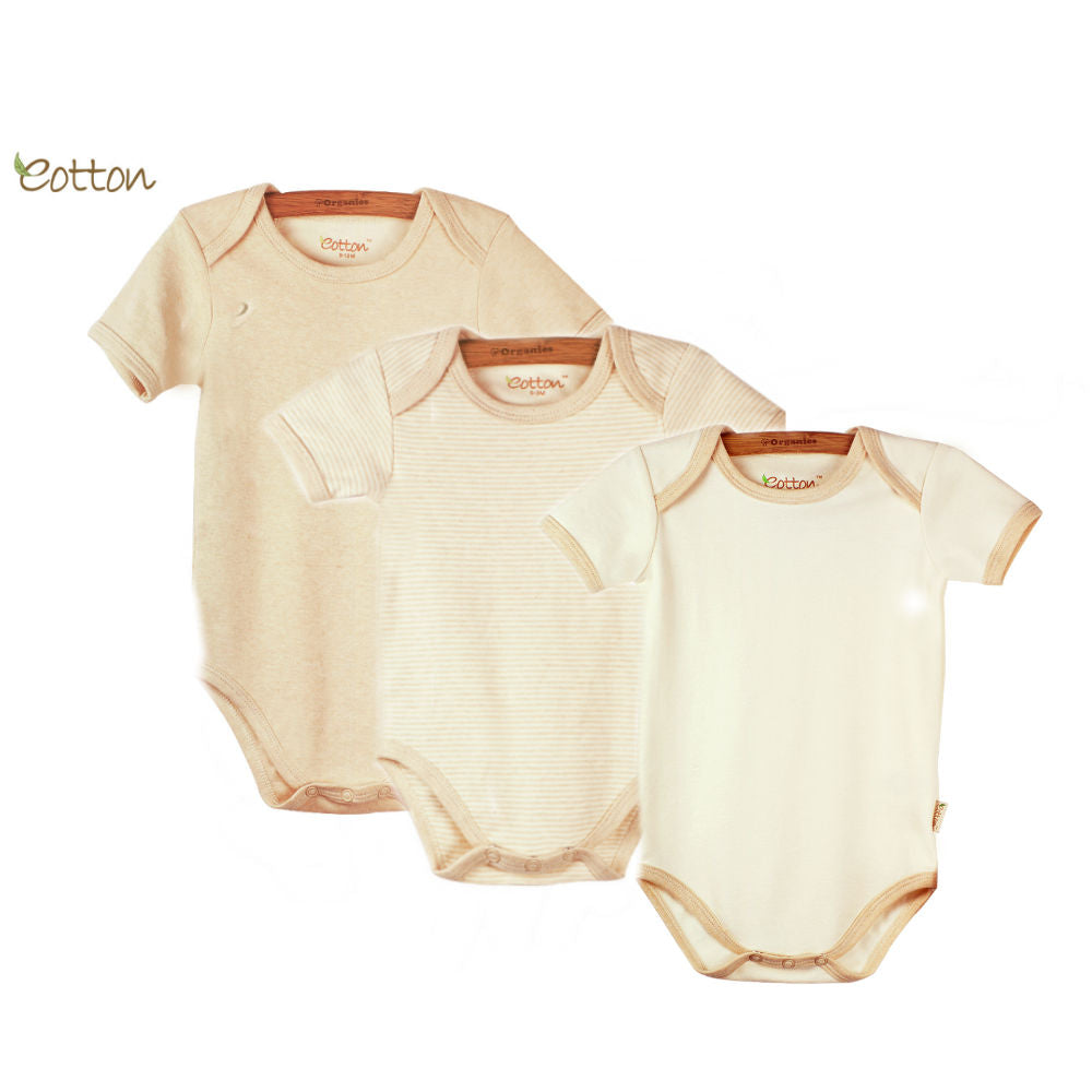 3-Pack Organic Short Sleeve Body with Envelop Neck.