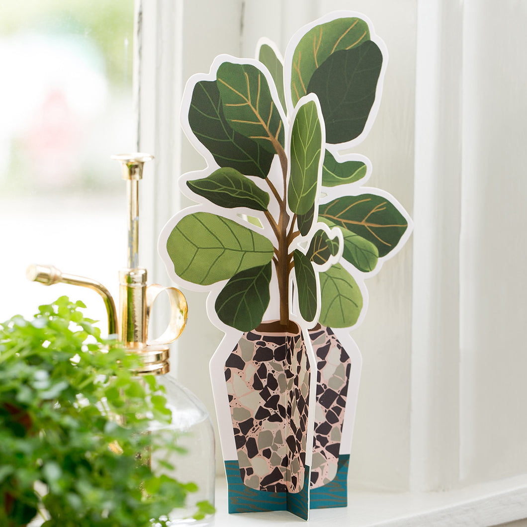 Fiddle Leaf Fig Paper Plant