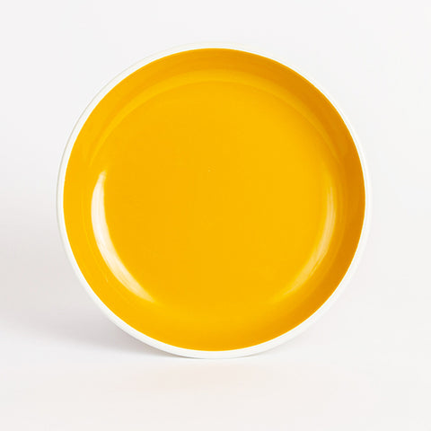 Enamel Dinner Plate, Orange