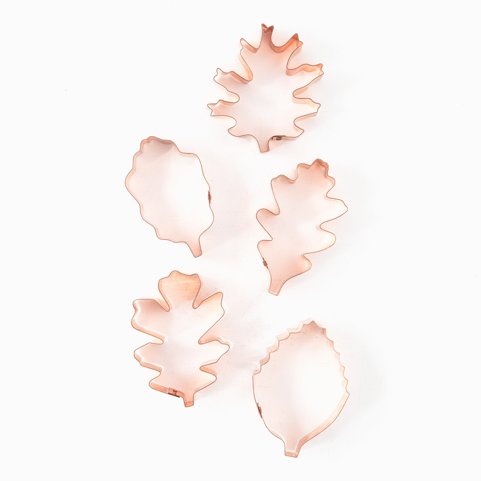 Sonoma Leaf Cookie Cutters