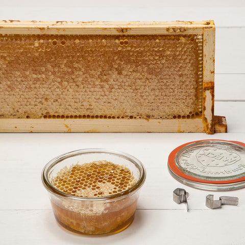 Beelove SHED honeycomb from Sonoma County
