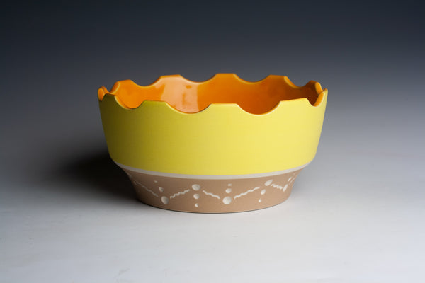 Yellow and Cinnamon Rook Bowl