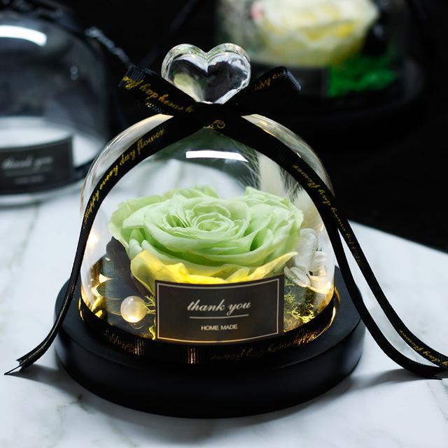 Rose Eternelle sous Cloche LED Vert