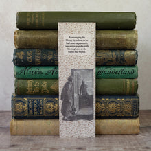 Load image into Gallery viewer, Bookshelf layout humour bookmark featuring a Sherlock Holmes illustration.