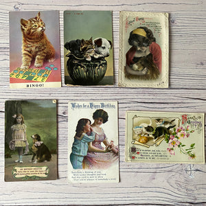 Postcards (vintage used x6) animals, cat, puppies, dog