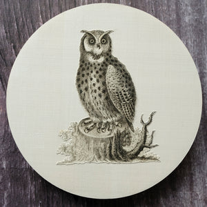 Athenian Owl wall decoration.  Original book plate on Beech wood base.