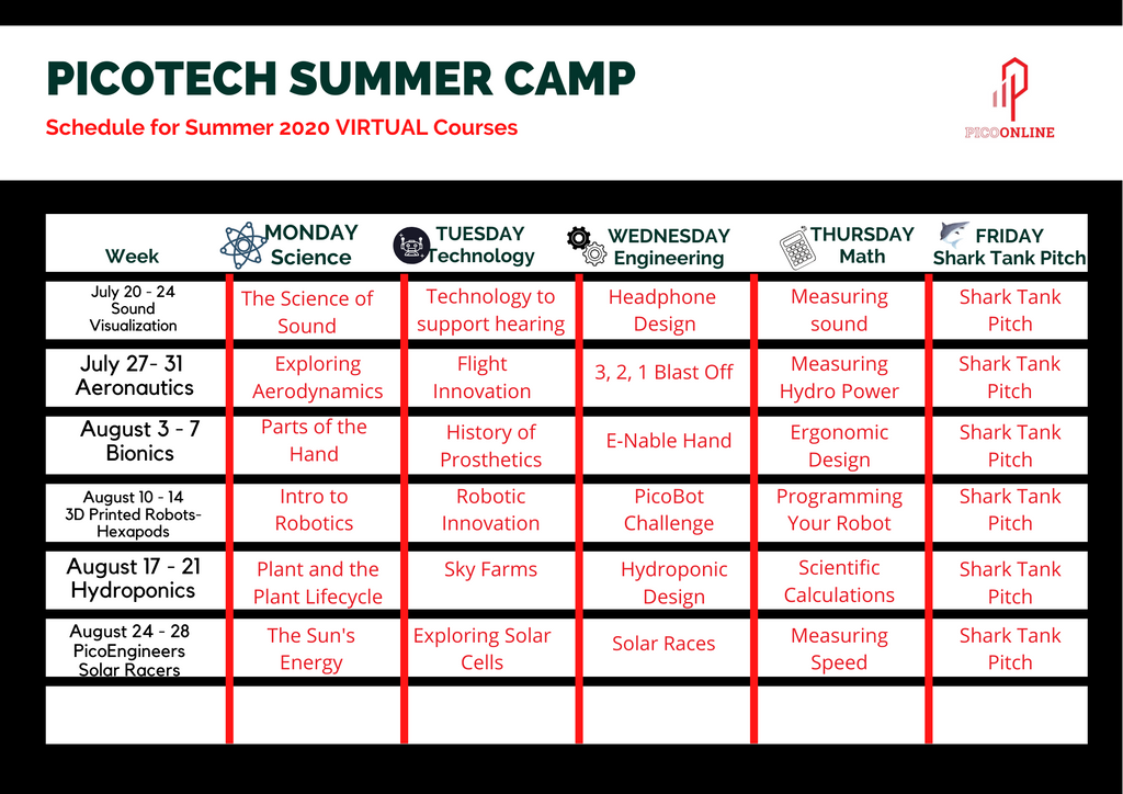 Week Two of PicoTech Summer Camp 2020