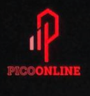 PicoOnline Pro: Intro to 3D Printing