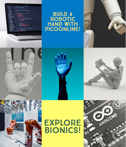 PicoOnline Summer Camp: Week 7: Bionics