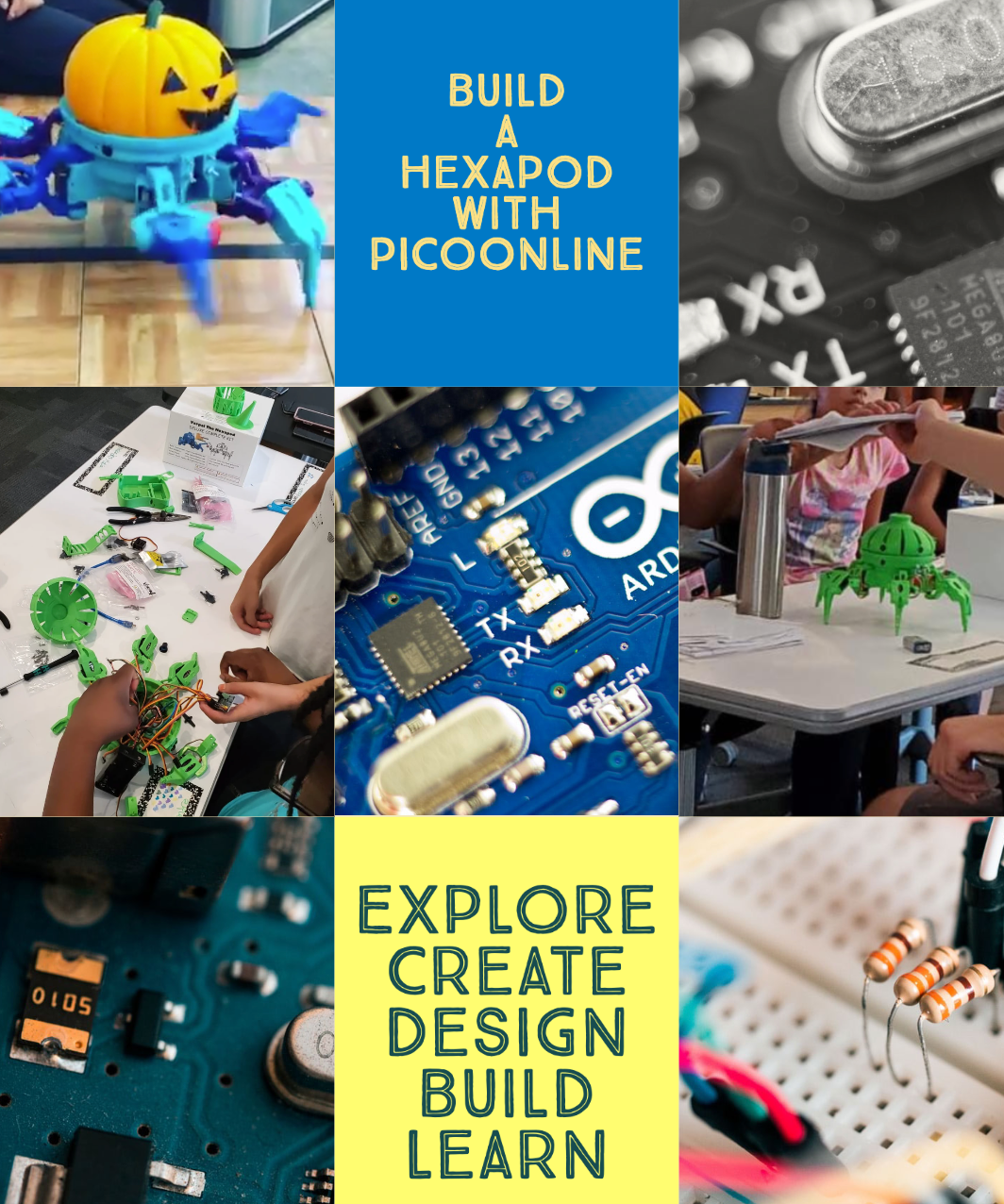 PicoOnline Summer Camp Week 8: 3D Printed Robots-Hexapods