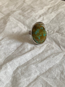 Turquoise ring Sz 7.75