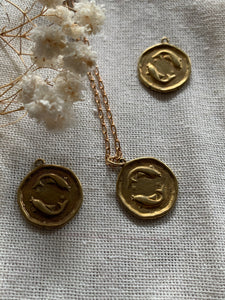 Brass Horoscope necklace