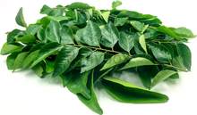 Load image into Gallery viewer, Curry leaves / കറിവേപ്പില