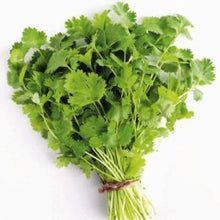 Load image into Gallery viewer, Coriander Leaves / മല്ലി ഇല