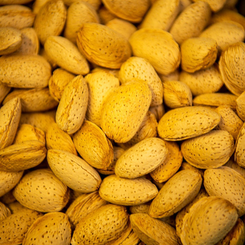 Almonds in Shell ($15 p/kg)