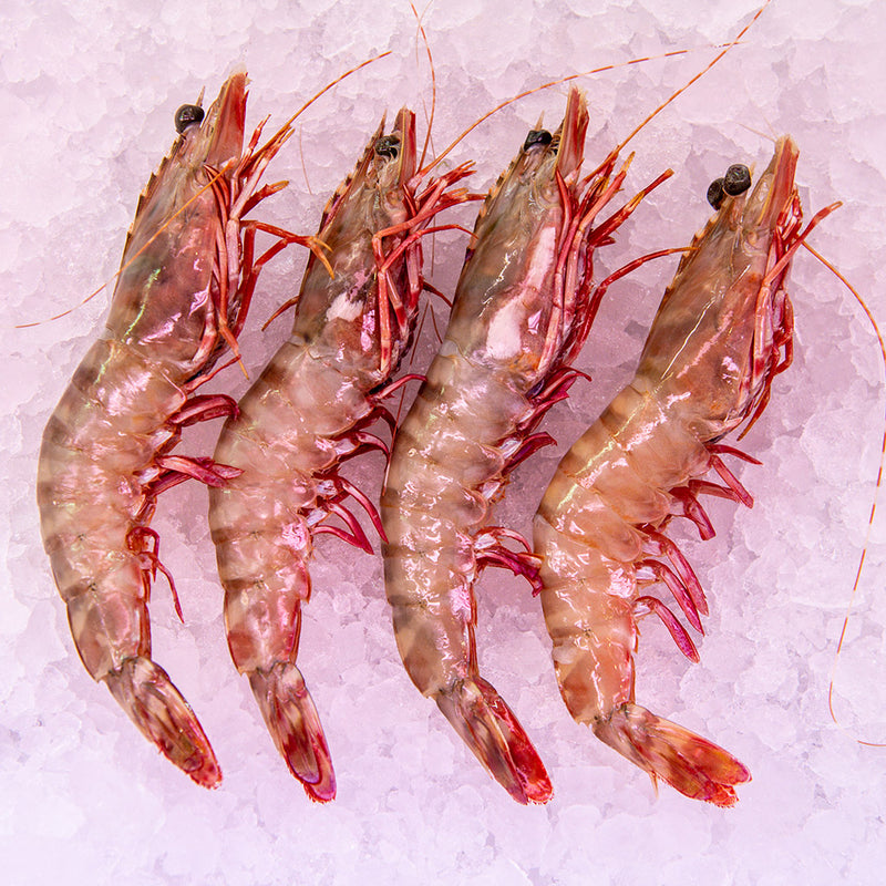 X/L Green Prawns with Shell ($52.90 p/kg)