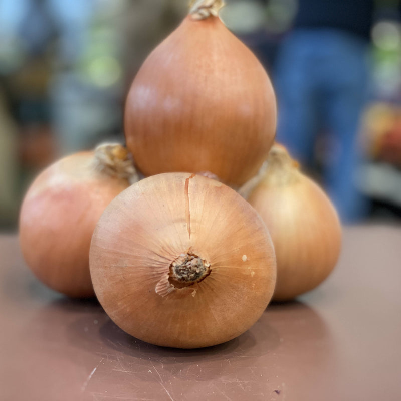 Brown onion($3.99 P/kg)
