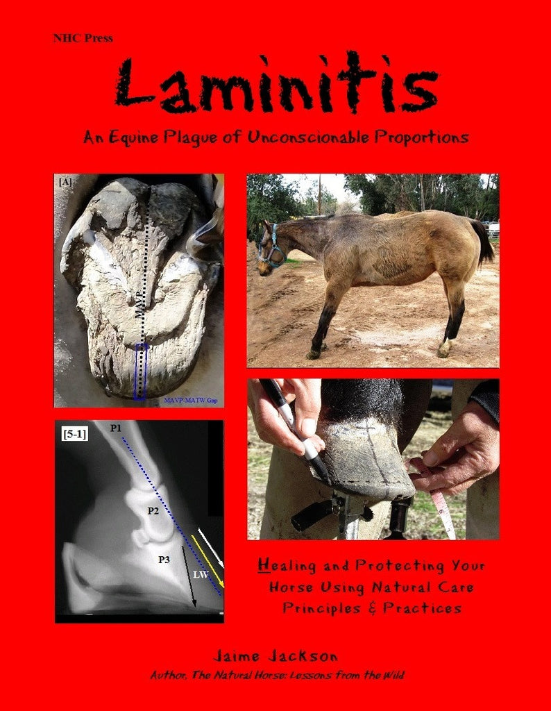 Laminitis: A Plague of Unconscionable Proportions -- Healing and Protecting Your Horse Using Natural Care Principles and Practices
