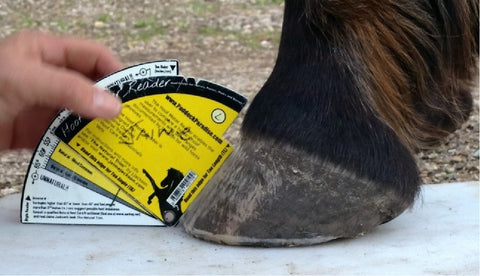 Hoof Meter Reader (for professionals)