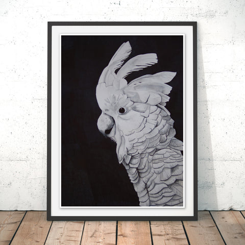 Cockatoo Original Print by Alice Rope