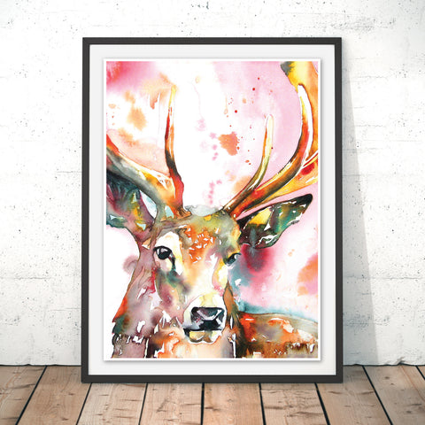 Red Stag Original Print by Liz Chaderton