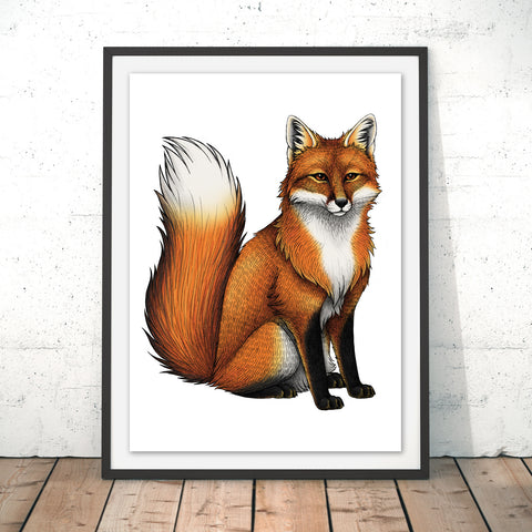 Red Fox Original Print by Lyndsey Green
