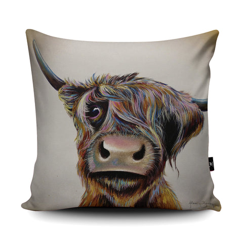 A Bad Hair Day Cushion by Adam Barsby