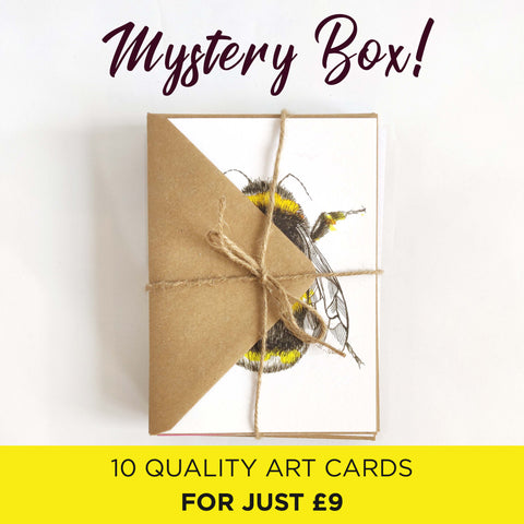 Mystery Cards 10 Pack Mystery Box by Mystery Box