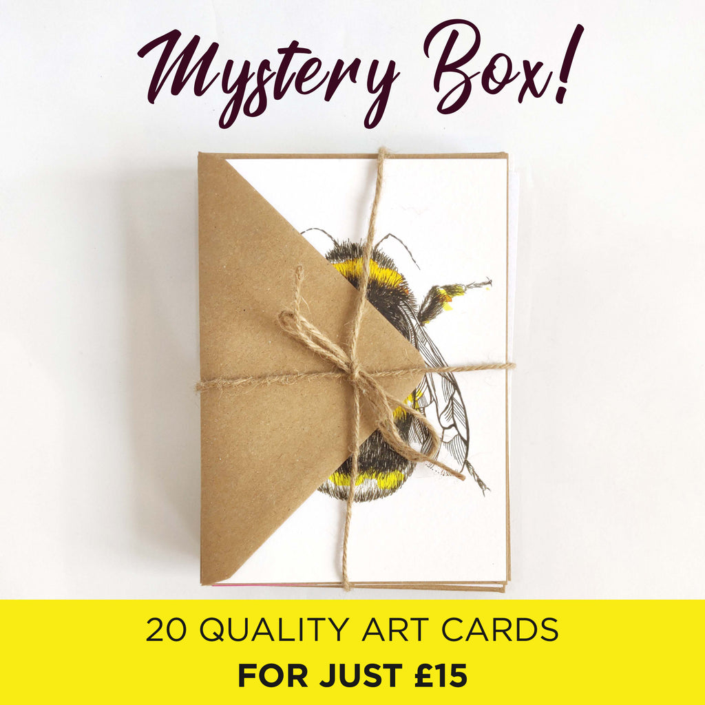 Mystery Cards 20 Pack