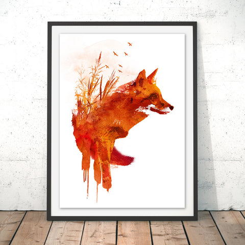 Plattensee Fox Original Print by Robert Farkas