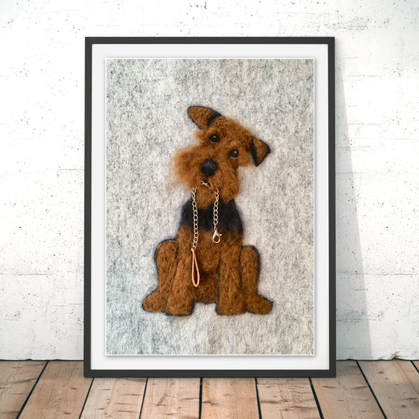 Is It Time Irish Terrier
