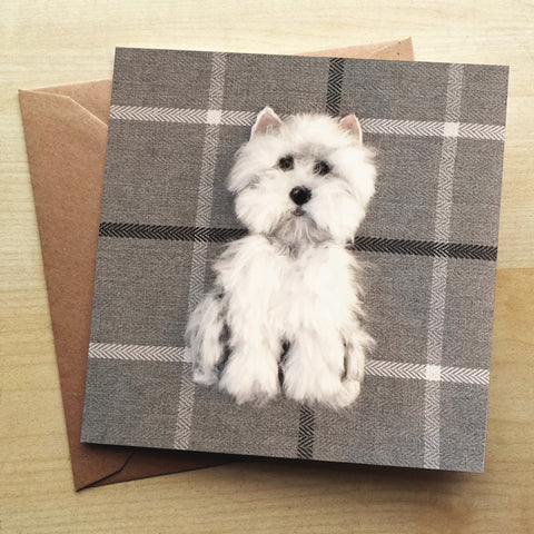 Westie Greetings Card by Sharon Salt