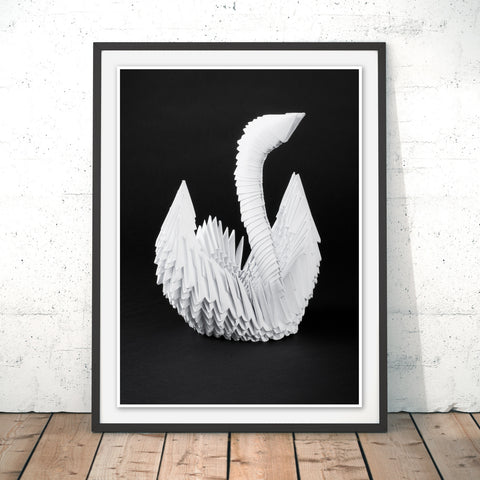 Swan Lake Original Print by Simon Wadsworth