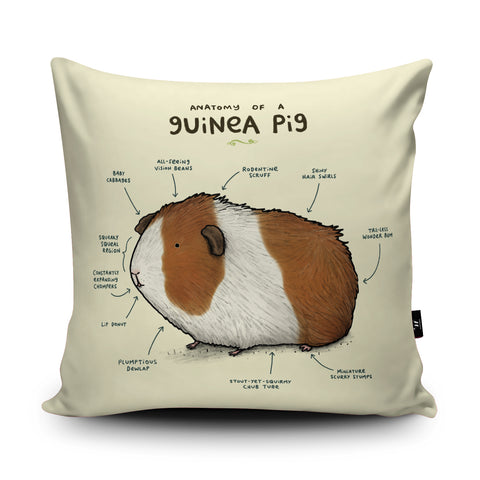 Anatomy of a Guinea Pig Cushion by Sophie Corrigan