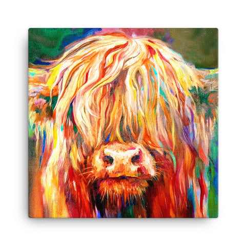 Baby Highland Wooden Canvas by Sue Gardner