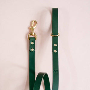 Green -  Classic Leather Lead - [Holler Brighton]
