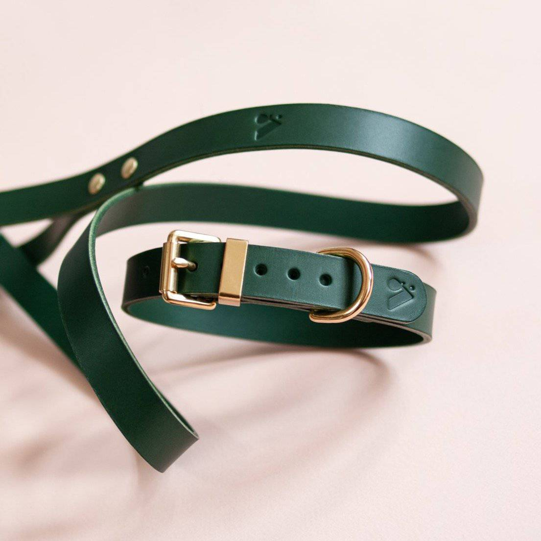 Green -  Classic Leather Lead - Holler Brighton